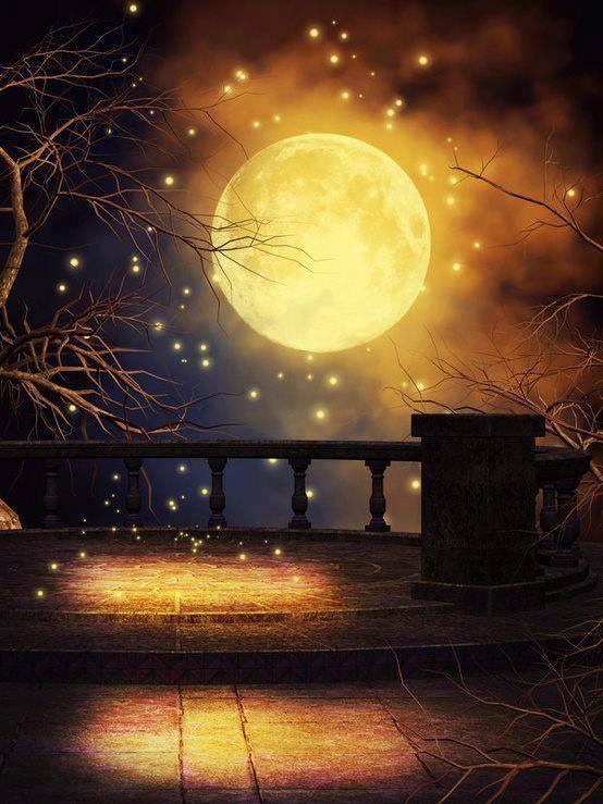 Buonanotte A Chi Ha Troppe Cose A Cui Pensare Parola